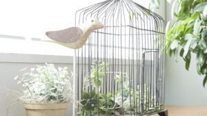 窓辺の鳥かご