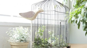 鳥かごの写真